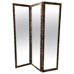 1960s Mirrored Screen with Oil Stain Finish