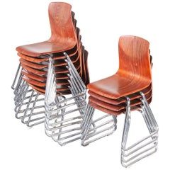 1960s Pagholz Dining Chairs Laminated Hardwood and Chrome Legs, Set of Twelve