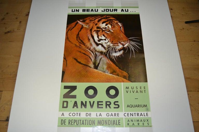 Zoo datiert belgien
