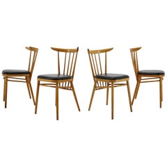 1960s Set of Four Tatra Beech Dining Chairs, Czechoslovakia