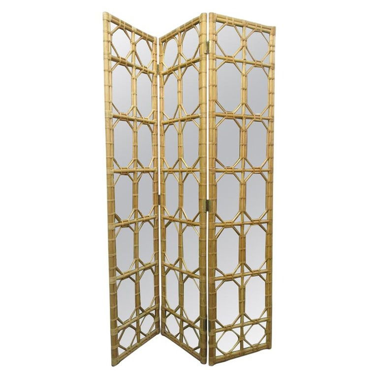 Mirror Floor Screen Room Divider