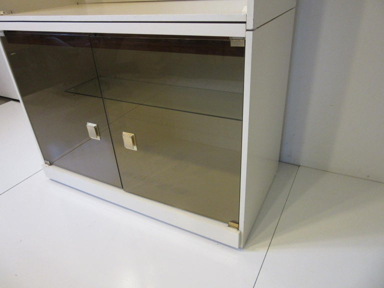 1970s Cabinet or Bookcase with Glass Doors In Good Condition For Sale In Cincinnati, OH