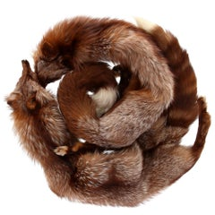1970s G. Balzani Brown Fox Fur Scarf