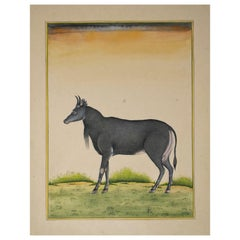 1970s Indian Paper Drawing of a Goat