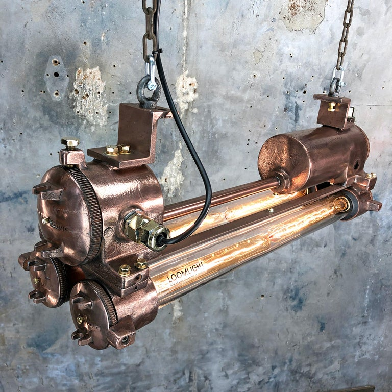 20th Century 1970s Industrial Copper, Polished Brass and Glass Flameproof Edison Tube Light For Sale