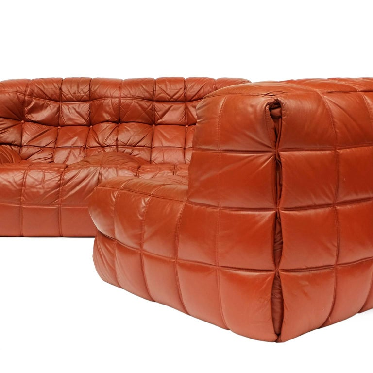 1970s Leather Kashima Sofa and Chair by Michel Ducaroy for Ligne Roset In Good Condition For Sale In Nottingham, Nottinghamshire