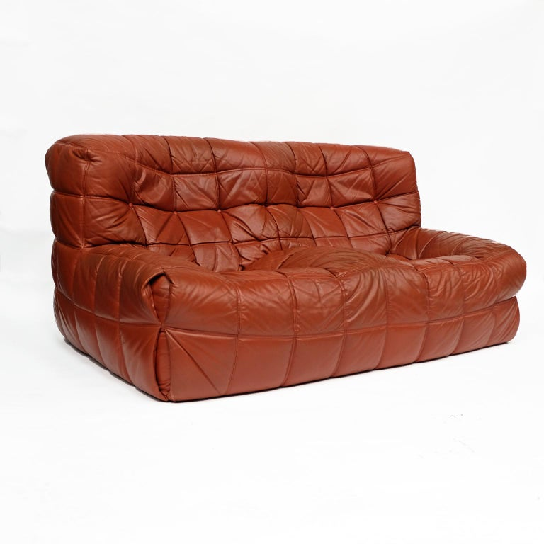 Late 20th Century 1970s Leather Kashima Sofa and Chair by Michel Ducaroy for Ligne Roset For Sale
