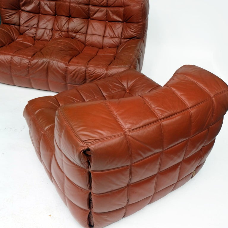 1970s Leather Kashima Sofa and Chair by Michel Ducaroy for Ligne Roset For Sale 1