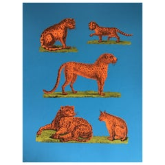 1970s Tiber Press Cheetah Lithographs