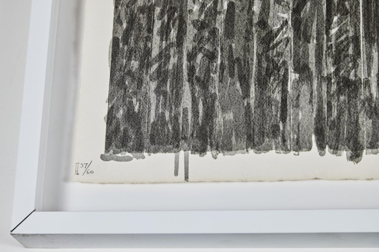 Late 20th Century 1973, Jasper Johns Lithograph For Sale