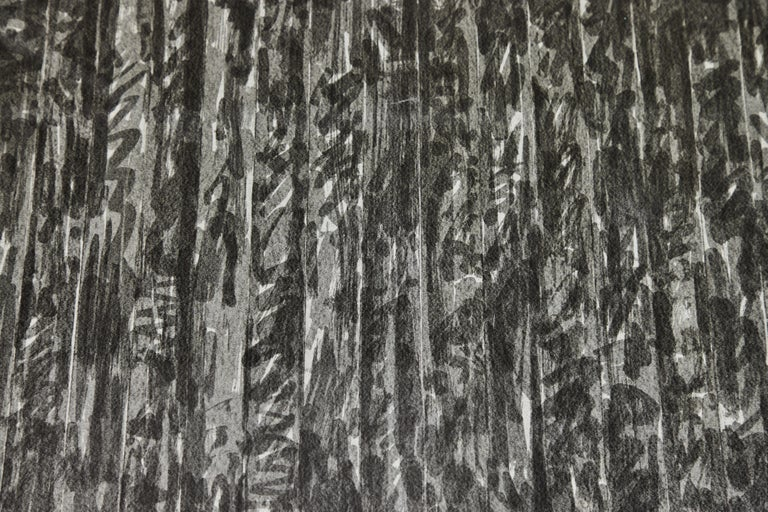 Paper 1973, Jasper Johns Lithograph For Sale