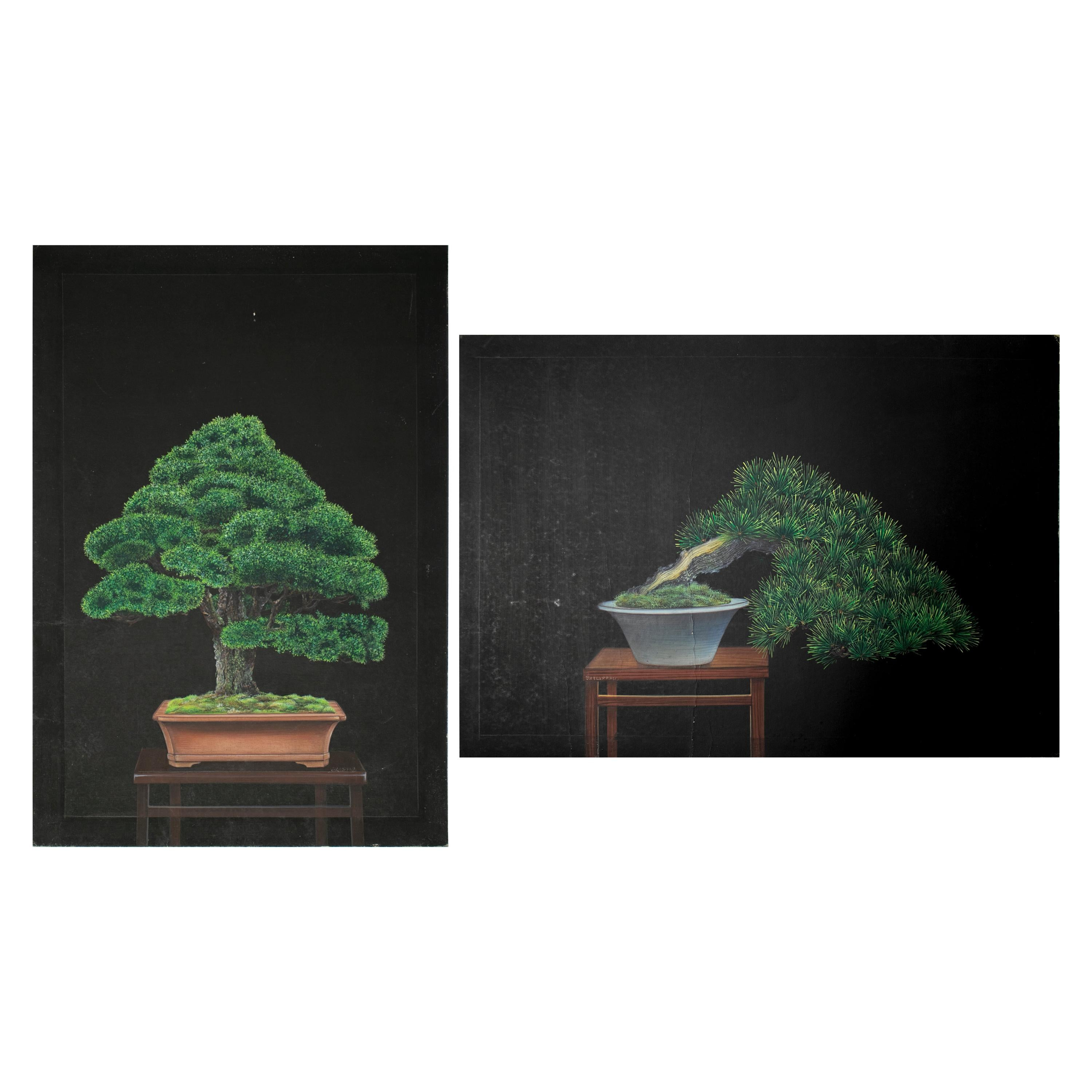 1980s Chinese Pair of Oil on Canvas Bonsai Paintings from a Private Collection