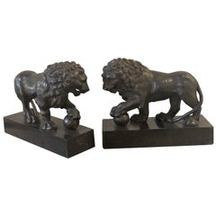 19th-20th Century Pair of Bronze Full Bodied Lion Bookends on Pedestal Bases