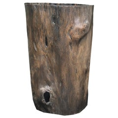 19th-20th Century Tree Trunk, Probably Chinese Zitan Wood