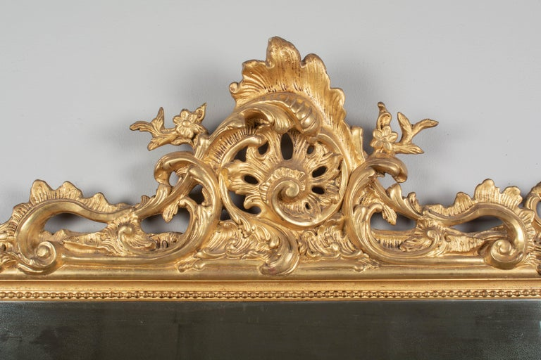An exceptional 19th century Louis XV style mirror gilded mirror. Elaborate crest has swirling acanthus leaves and flower buds and nice three dimensional details. Scrolling foliate motifs at the corners and along the sides. Bright, vibrant gilt