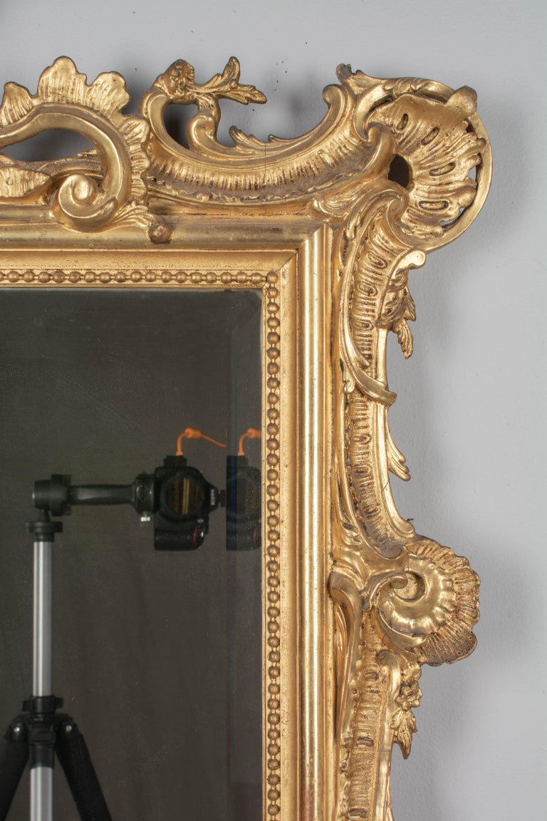 19th Century French Louis XV Style Gilded Mirror In Good Condition For Sale In Winter Park, FL