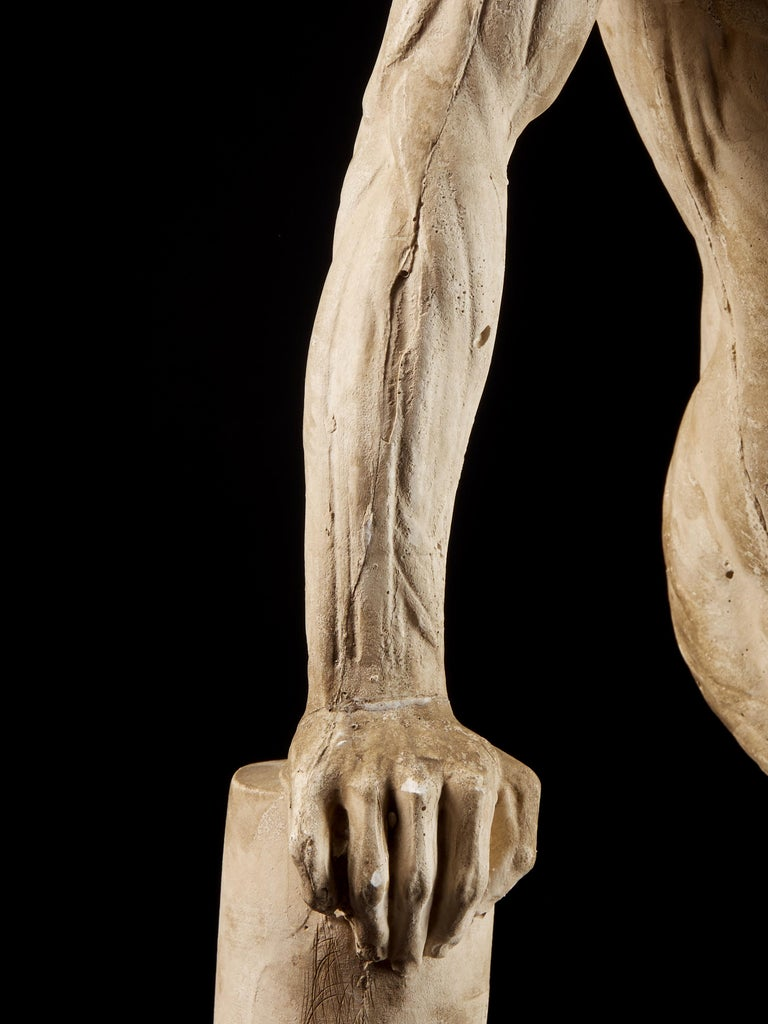 19th Century, Italian School, Two Anatomical Flayed Figures in Plaster For Sale 9