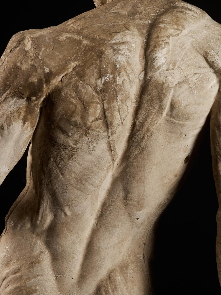19th Century, Italian School, Two Anatomical Flayed Figures in Plaster For Sale 12