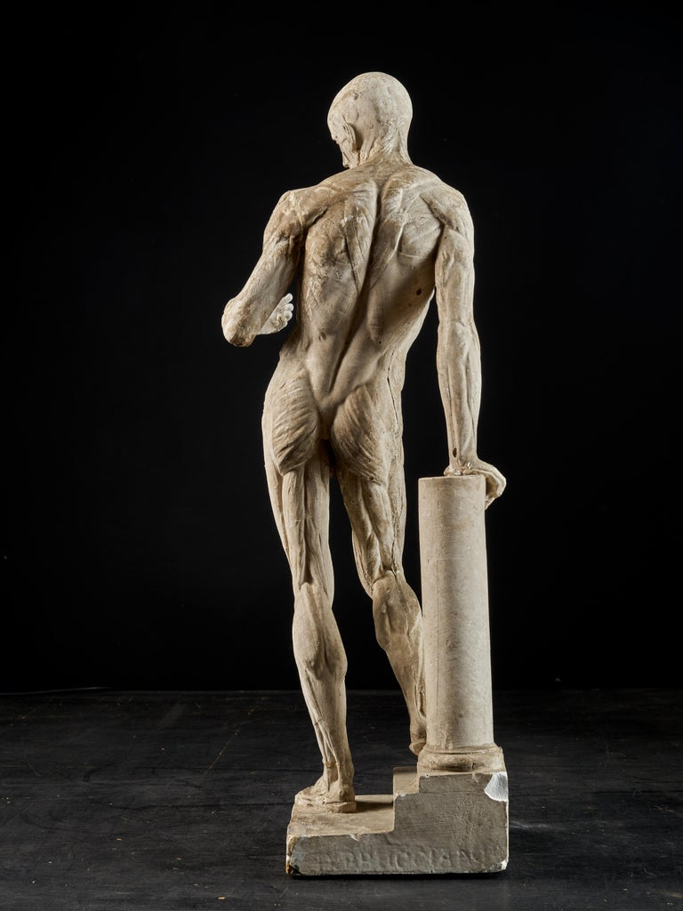 19th Century, Italian School, Two Anatomical Flayed Figures in Plaster For Sale 2