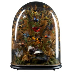 19th Century, United Kingdom, Victorian Dome Filled with 17 Exotic Birds