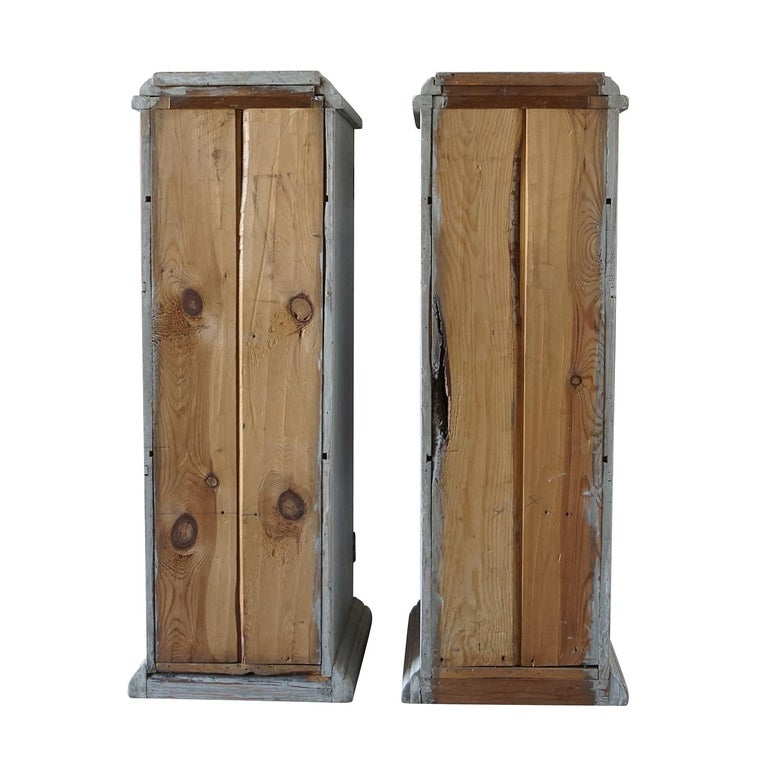 19th Century, a Pair of Gustavian Pedestal Cabinets For Sale 1