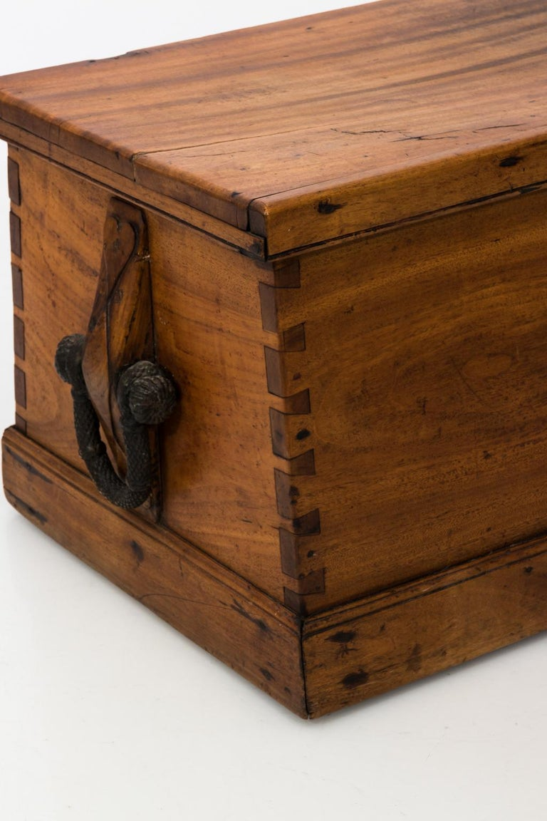 19th Century Antique Camphorwood Canted Sea Chest At 1stdibs