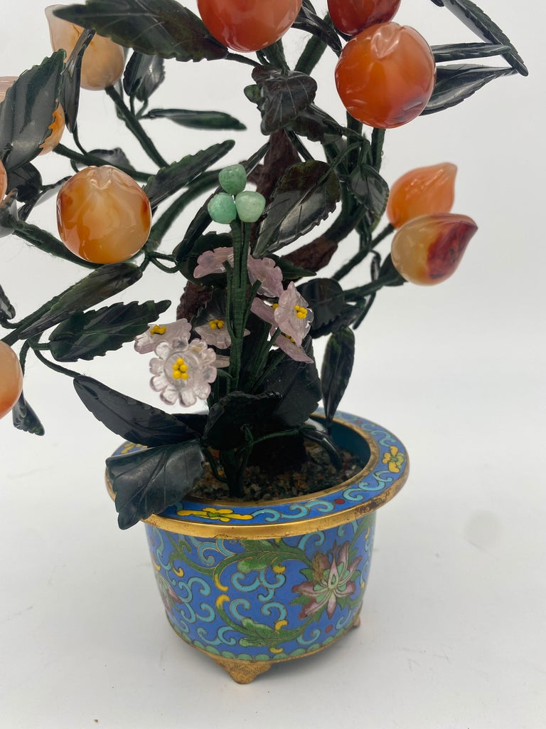 Antique Chinese Bonsai Tree in Gilt Cloisonné Pot In Good Condition For Sale In Brea, CA