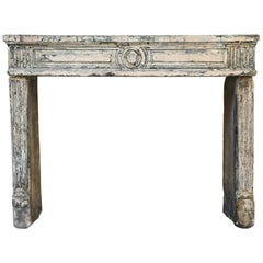 19th Century Antique Fireplace of French Limestone in Style of XVI