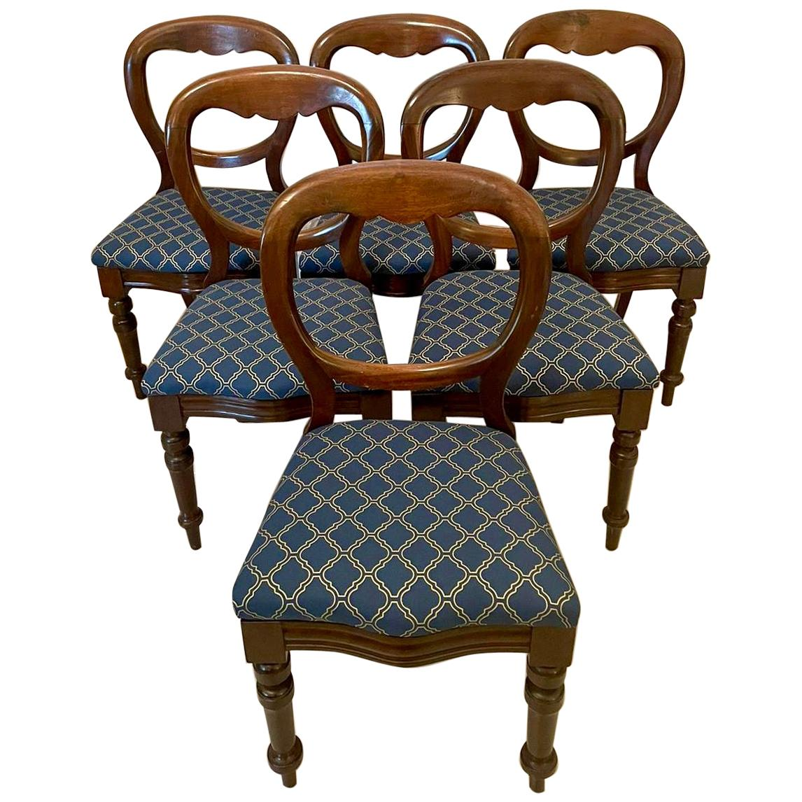 19th Century Antique Set of Six Victorian Balloon Back Mahogany Dining Chairs