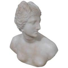 19th Century Art Nouveau Carved Marble Bust Sculpture