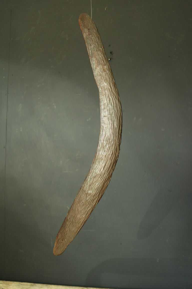 19th Century Australian Aboriginal Boomerang In Fair Condition For Sale In Gloucestershire, GB