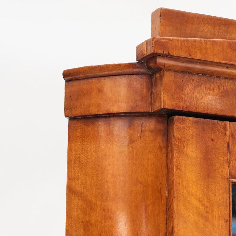 19th Century Austrian Biedermeier Corner Cabinet in Flame Birch Veneer For Sale 3