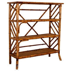 19th Century Bamboo Bookcase from France