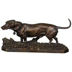 "19th Century ""Basset"" Bronze by P.J Mêne"