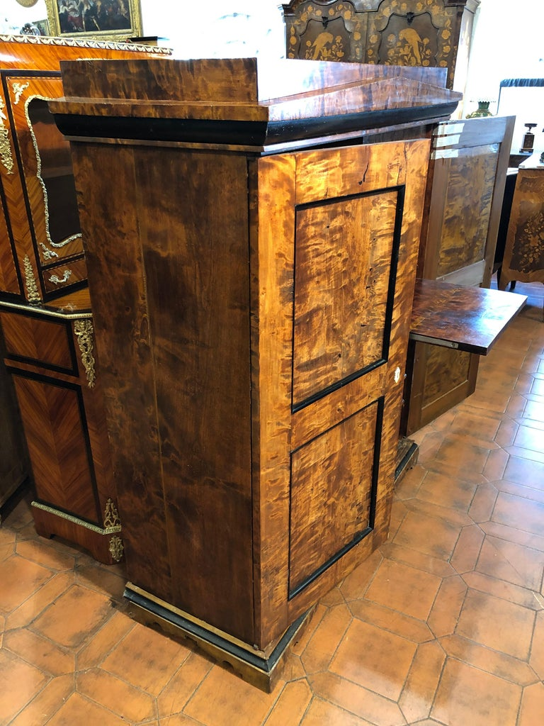 Swedish 19th Century Biedermeier Birchwood Sweden Secretaire and Armoires ,1830s For Sale