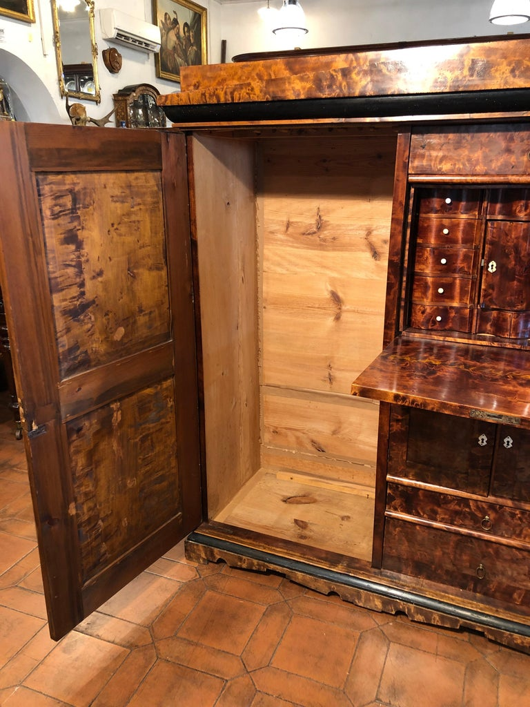 19th Century Biedermeier Birchwood Sweden Secretaire and Armoires ,1830s For Sale 2