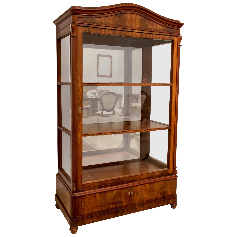 19th Century Biedermeier / Louis Philippe Display Cabinet or Vitrine