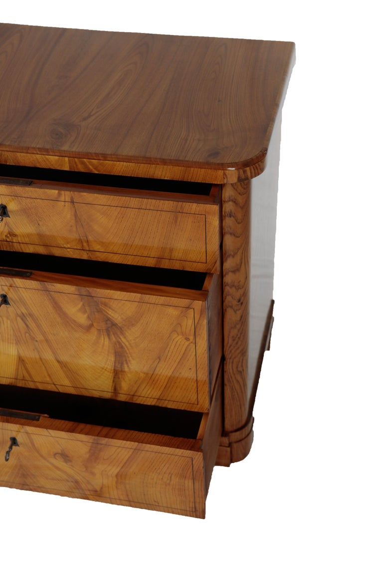 19th Century Biedermeier Period Chest of Drawers, Ashwood, 1830-1840, Brown In Good Condition For Sale In Muenster, NRW