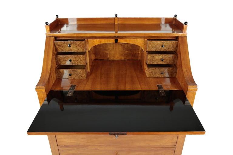 19th Century Biedermeier Period Secretary, circa 1830, Cherrywood, Honeybrown For Sale 3