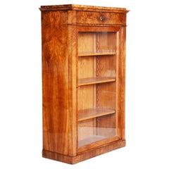 19th Century Biedermeier Walnut Display Display Bookcase, Czechia