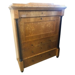 19th Century Biedermeier Wood Birch Secretaire, 1830