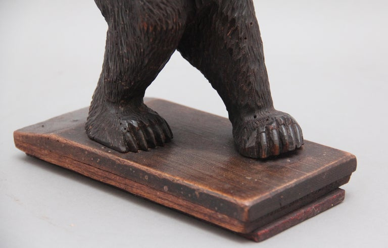19th Century Black Forest Carved Bear For Sale 4