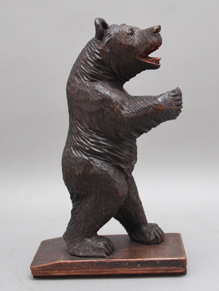 19th century Black Forest carved bear, hand carved from walnut, the bear is in a standing position with it's arms up, the carving is standing on a wooden base, lovely detail and in excellent condition. Circa 1880.