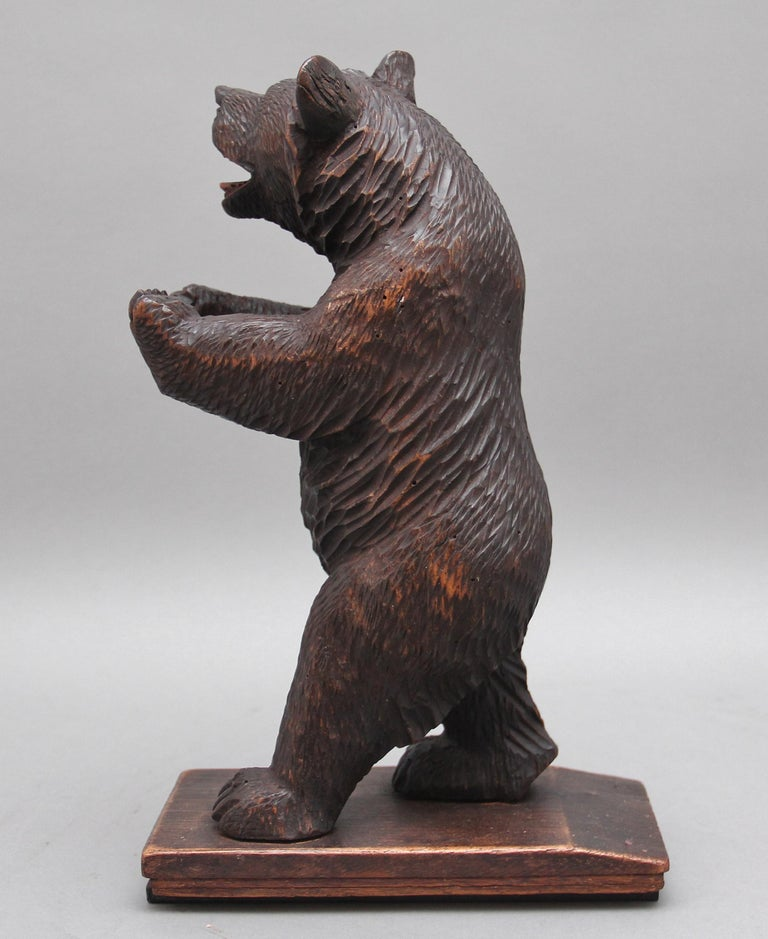 19th Century Black Forest Carved Bear In Good Condition For Sale In Martlesham, GB