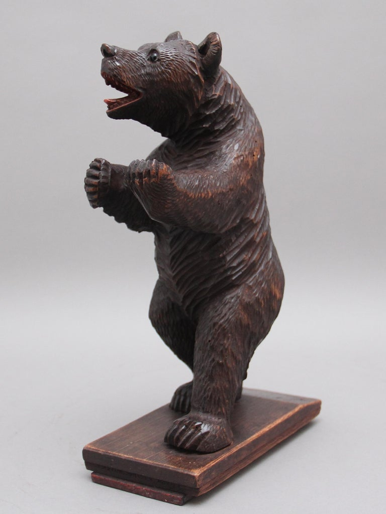 Late 19th Century 19th Century Black Forest Carved Bear For Sale