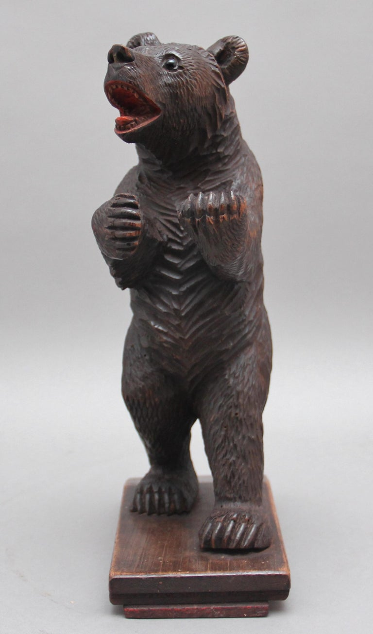 Walnut 19th Century Black Forest Carved Bear For Sale