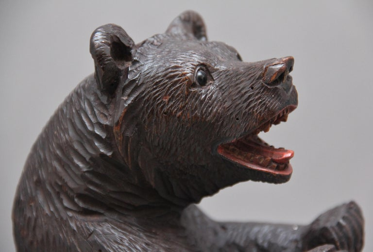 19th Century Black Forest Carved Bear For Sale 2