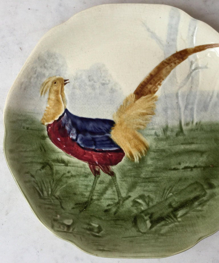 Majolica plate with a pheasant in the woods signed Hippolyte Boulenger Choisy le Roi, circa 1890. The manufacture of Choisy le Roi was one of the most important manufacture at the end of 19th century, they produced very high quality ceramics of all