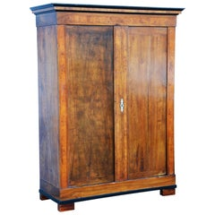 19th Century Bohemian Biedermeier Walnut Wardrobe Cabinet, Restored, 1830s