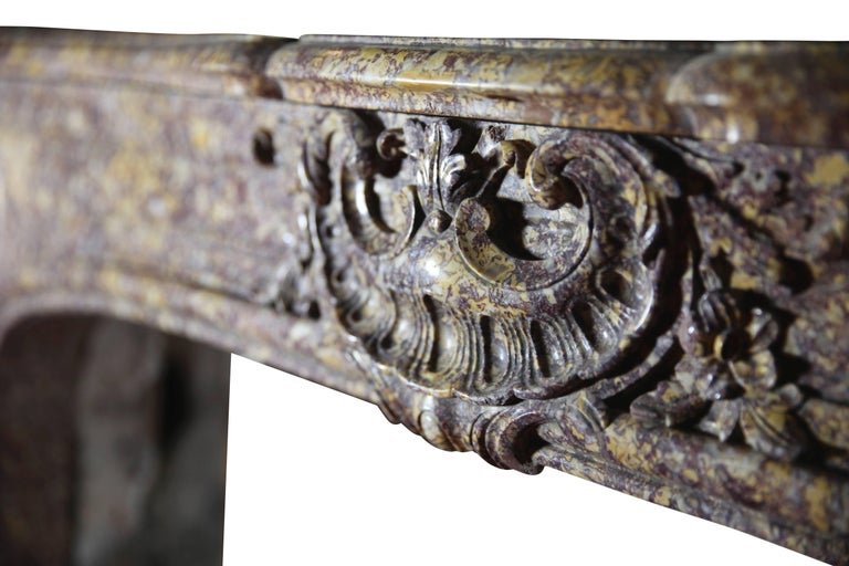19th Century Brocatelle Marble French Interior Antique Fireplace Surround For Sale 5